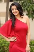 Nikki galarani latest sizzling pics-thumbnail-3