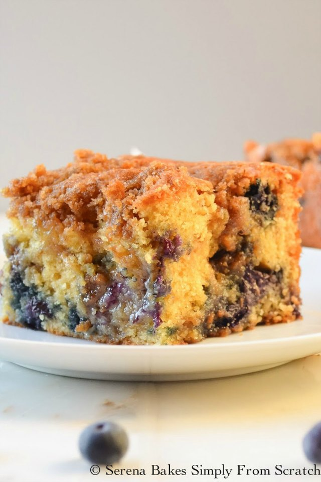 Blueberry Cinnamon Crumb Coffeecake is filled with lots of blueberries and swirls of cinnamon brown sugar making it a favorite for brunch or dessert from Serena Bakes Simply From Scratch.