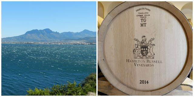 Degustação de vinho na vinícola Hamilton Russel (em Hermanus), África do Sul