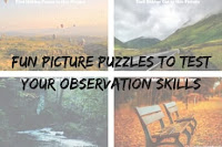 Fun Picture Puzzles to Test Your Observation Skills