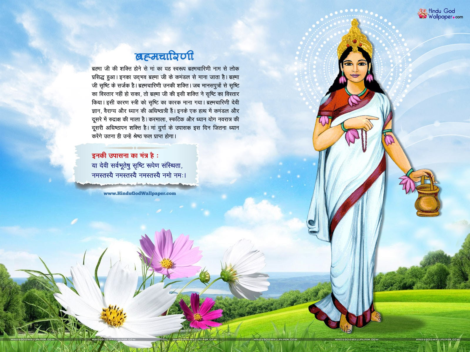 Must see Wallpaper High Quality Goddess - Brahmacharini+Mata+1  Pictures_765722.jpg