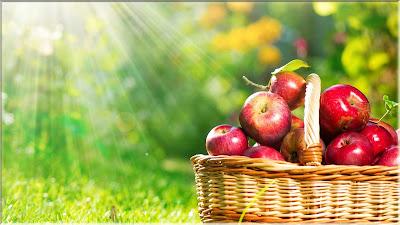 wallpaper keranjang buah apel