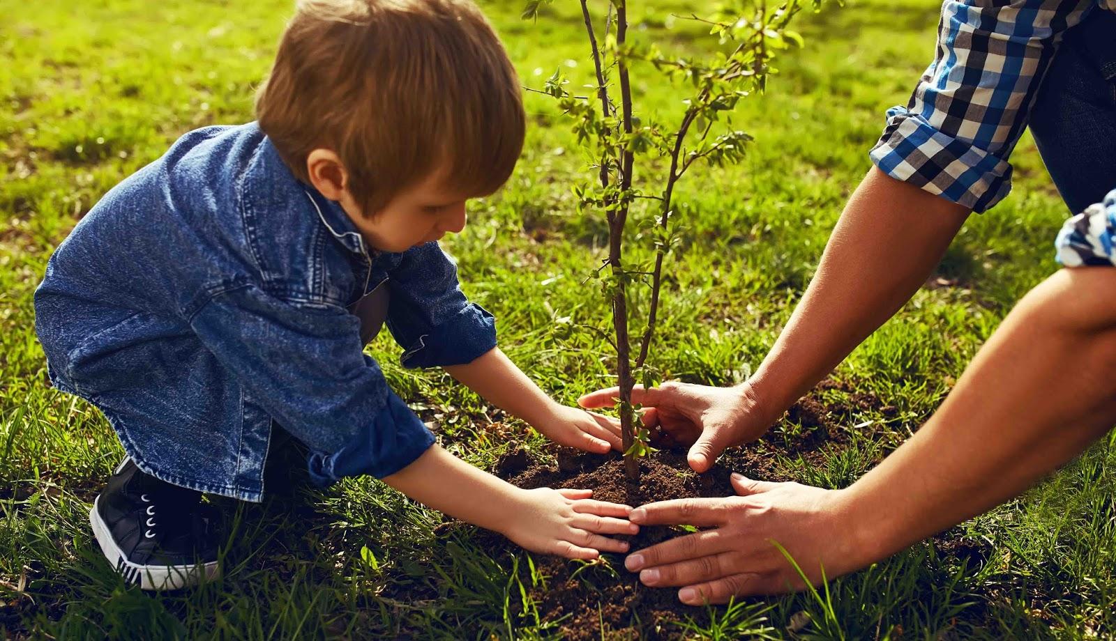 Ecolo bio nature permaculture urbaine et jardinage bio de novembre mars s 39 il ne g le pas - Quoi planter en novembre ...