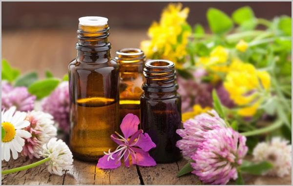 Lợi ích tuyệt vời của các loại tinh dầu thiên nhiên đối với sức khỏe và làm đẹp