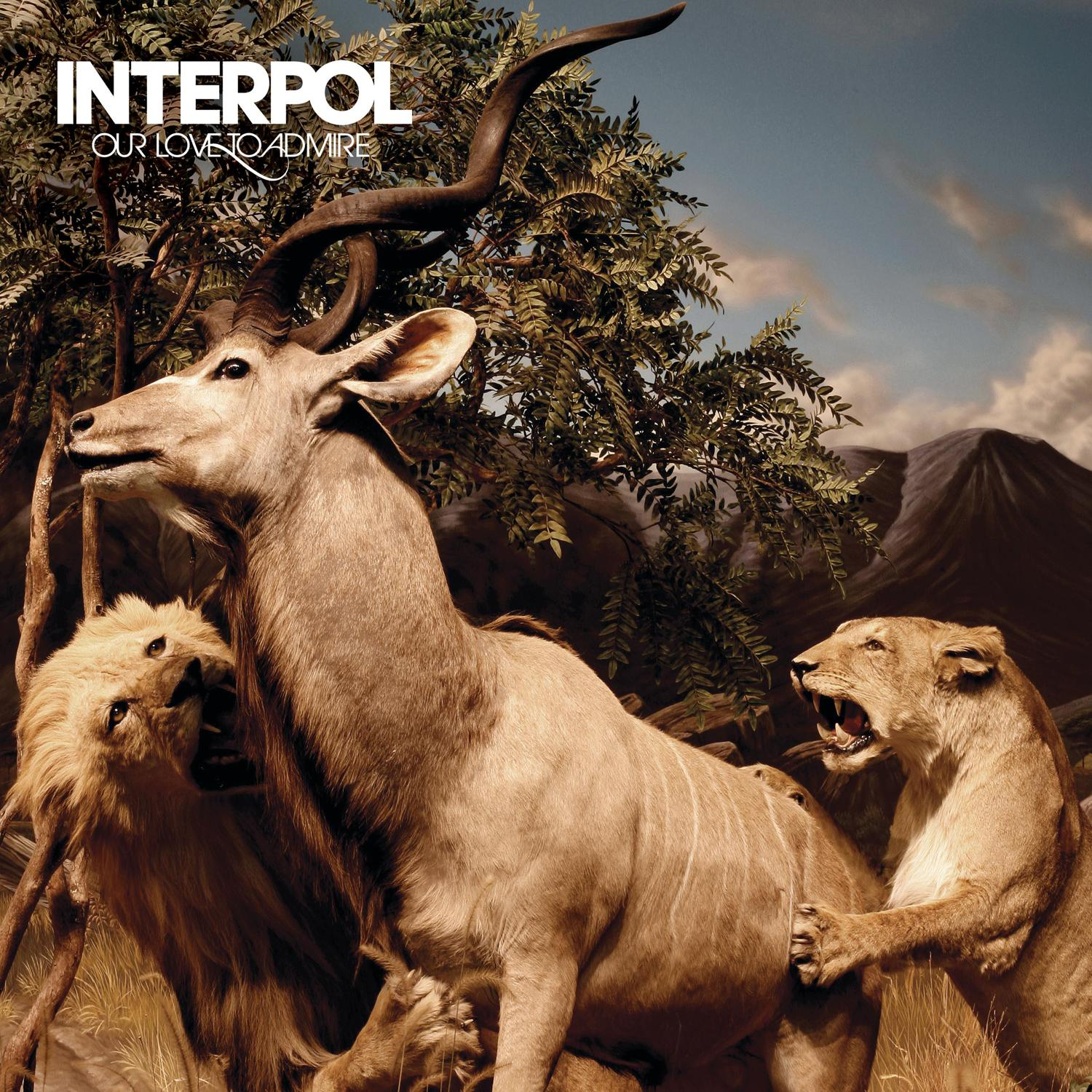 interpol our love