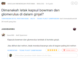 soal brainly terjawab by hazpedia