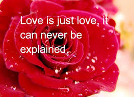 Rose Day Images, Rose day Quotes for free download
