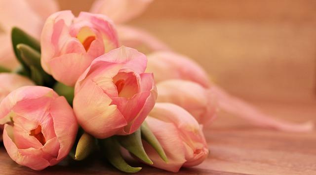 hoa đẹp nhất thế giới 19