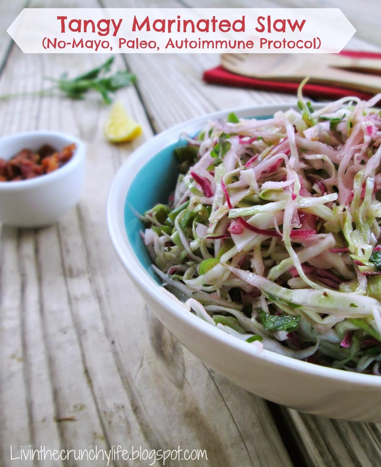 Zoe S Kitchen Marinated Slaw Recipe