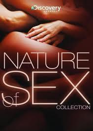 English Sex