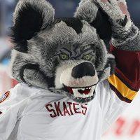 Skates, the Chicago Wolves mascot