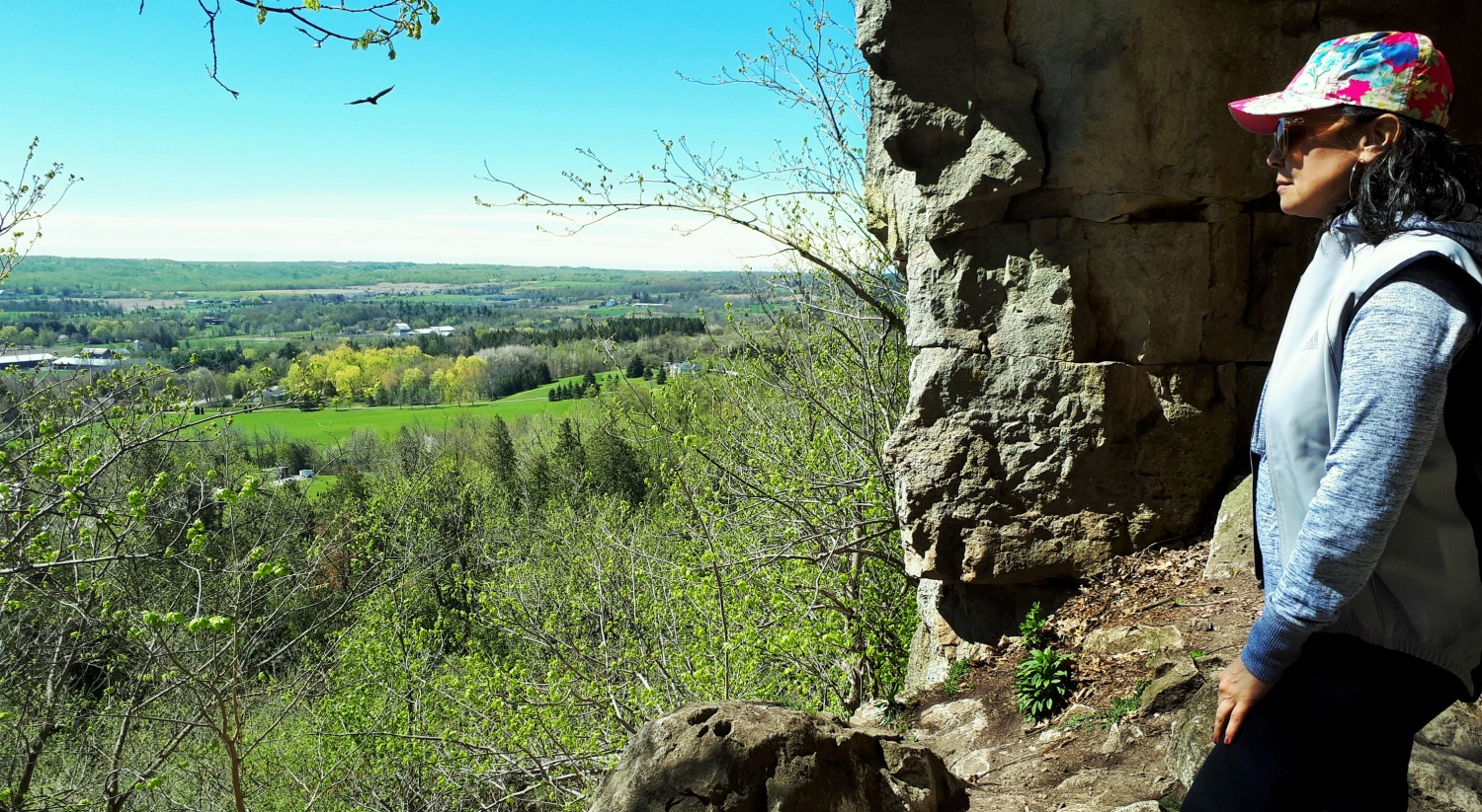 Rattlesnake point Look out