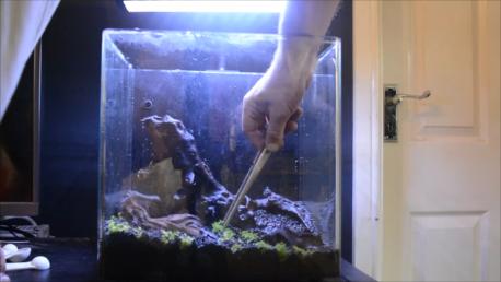 An easy guide into assembling a nano nature aquarium cube