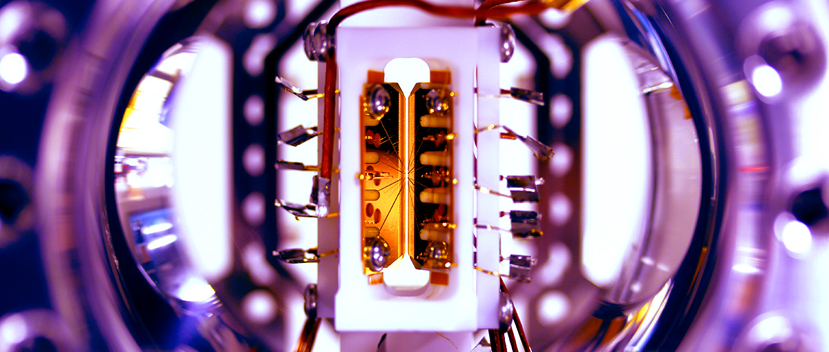 Trapped Ions Allow for Programmable Quantum Computer Module