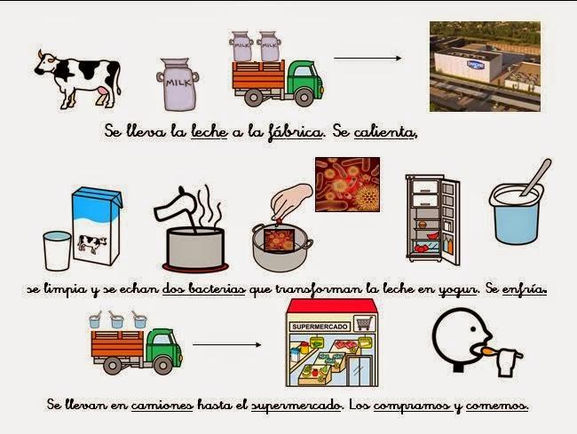 proceso de la leche   procesos de la leche  del queso y