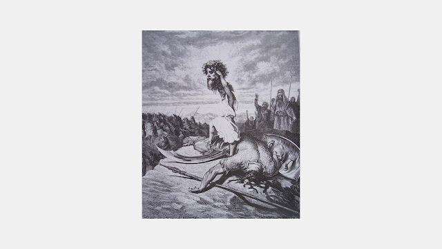 Anthurus d'Archer - Rêveries 2