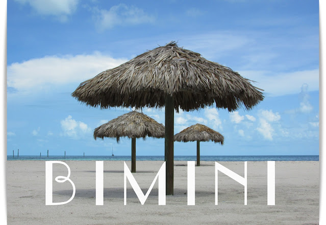 Empty Beach. Bimini Bahamas. Beach umbrellas