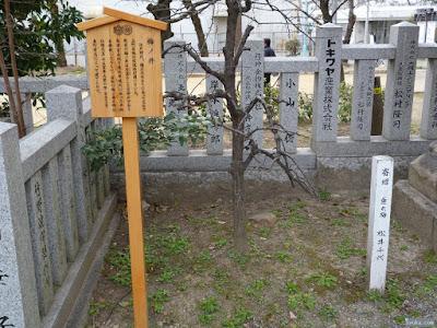 垂れ梅と梅ノ井の駒札