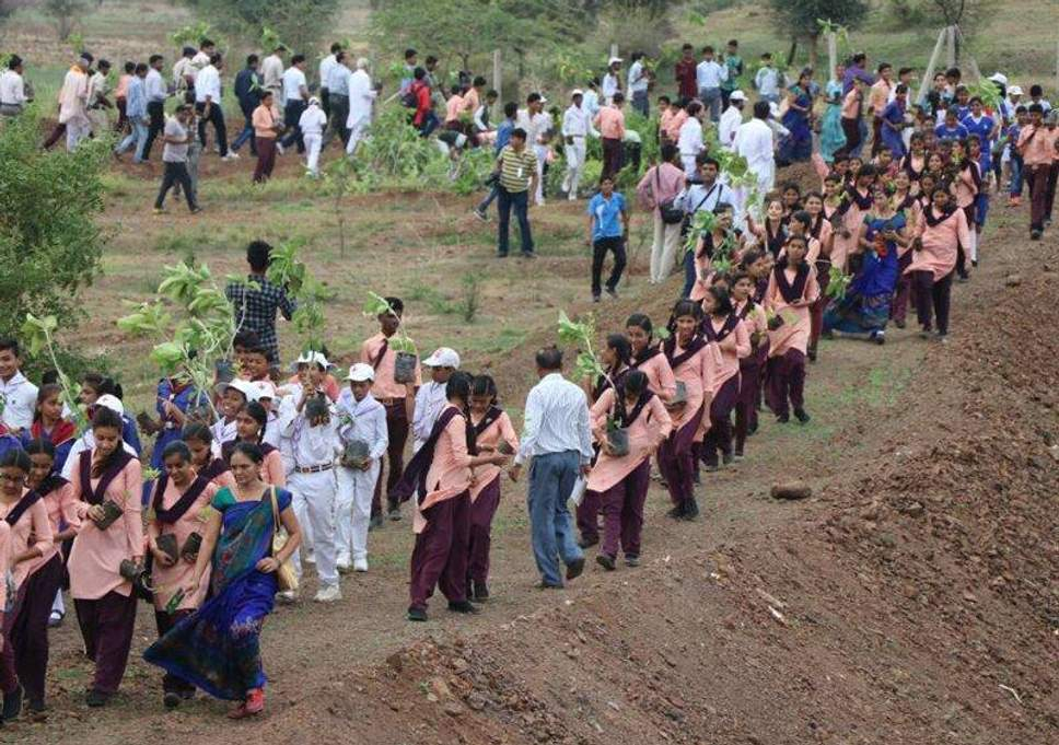 1.5 Million Volunteers Broke Guinness World Record By Planting 66 Million Trees In 12 Hours