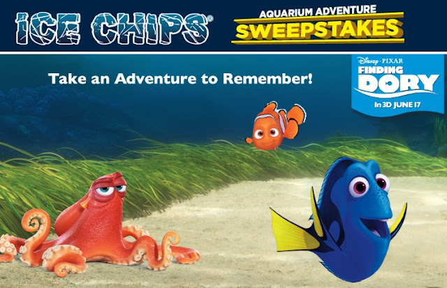 Ice Chips Candy and Disney Pixar's Finding Dory want you to enter daily for your chance to win a trip for you and the kids to San Francisco with tickets to The Monterey Bay Aquarium & more!