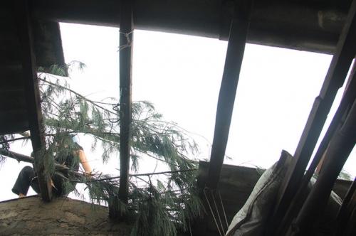 Hà Tĩnh tan hoang sau bão,Nghệ An sau bão số 10, Nghe an bao so 10, Nghệ An Hà Tĩnh bão số 10, Hà Tĩnh sau bão số 10, hậu quả bão số 10, ha tinh sau bao so 10, bao so 10 di qua, Tin tức Bão số 10, Hậu quả bão số 10, Hau qua bao so 10, Bão số 10 tàn phá, Bão số 10 tàn phá miền trung, Miền trung sau bão số 10, Mien trung sau bao so 10, Chudu43, www.chudu43.com, Tin tuc chudu43, Tin tuc du lich mien Trung chudu43, chudu43.com.