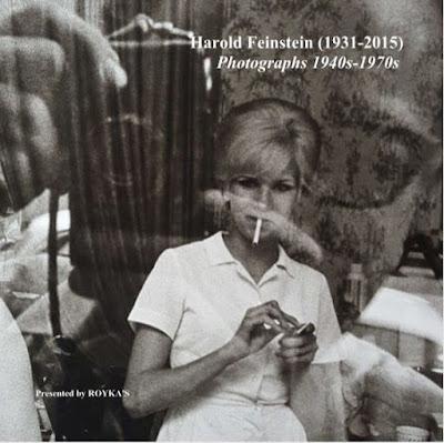 Image result for Royka Harold feinstein