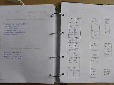 Programmare l'orto per l'estate: mappa dell'orto ad aprile