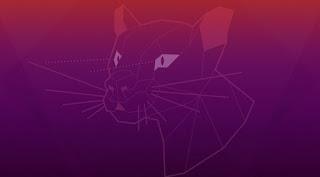 Guida Ubuntu
