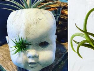 Pessoas estão transformando bonecas velhas em vasos de plantas assustadoras