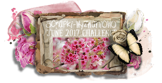 http://scrapki-wyzwaniowo.blogspot.ie/2017/06/june-2017-see-it-in-pink-1st-reveal.html