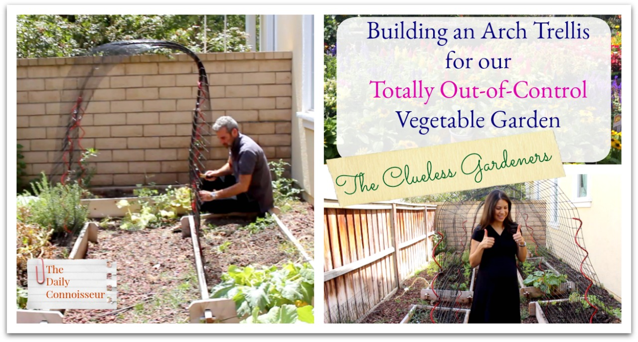 In today's family blog, Ben builds two arch trellises for our totally out-of-control vegetable garden. If you watched our previous vegetable garden video, ...