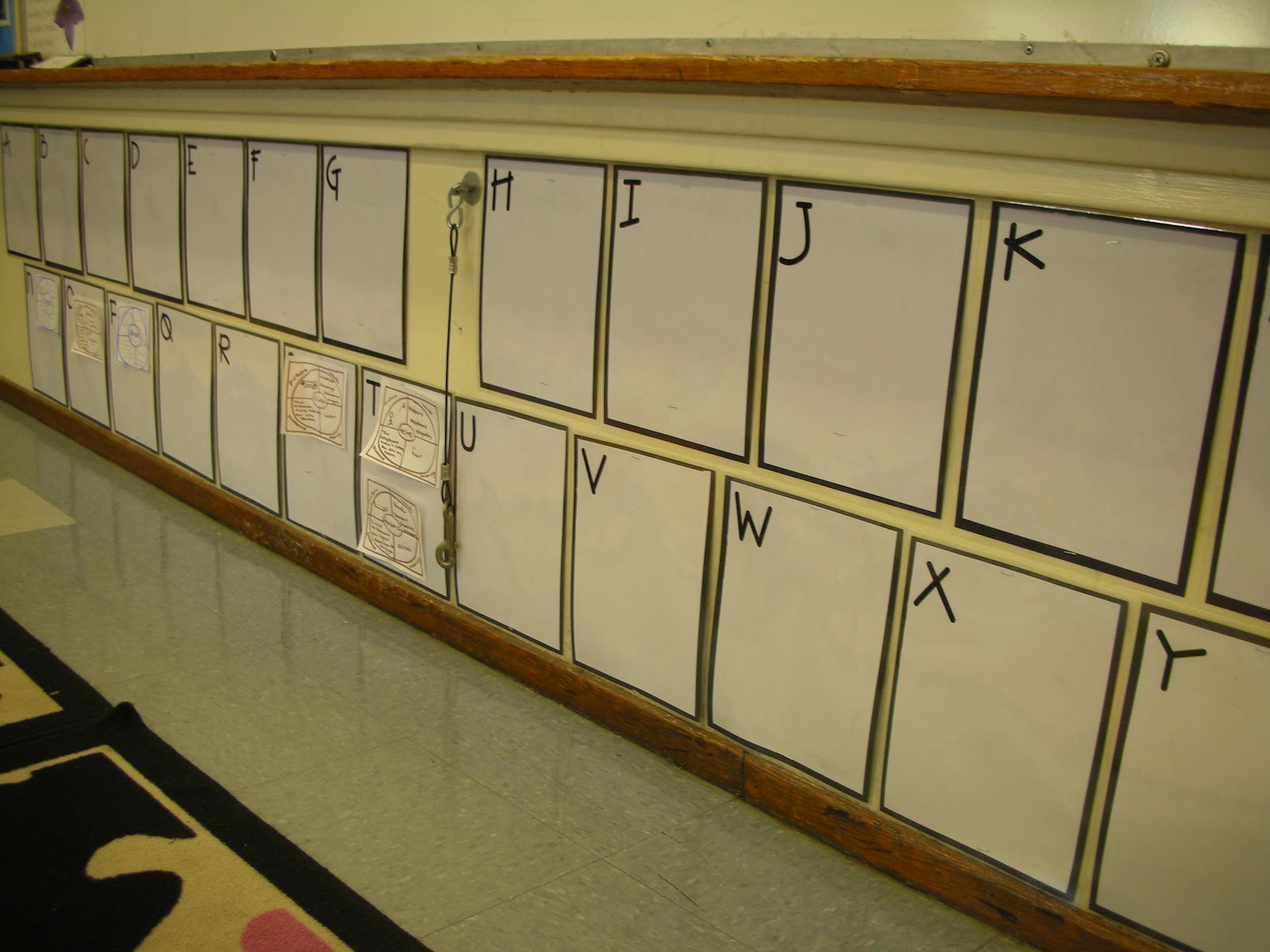Root Word Word Wall