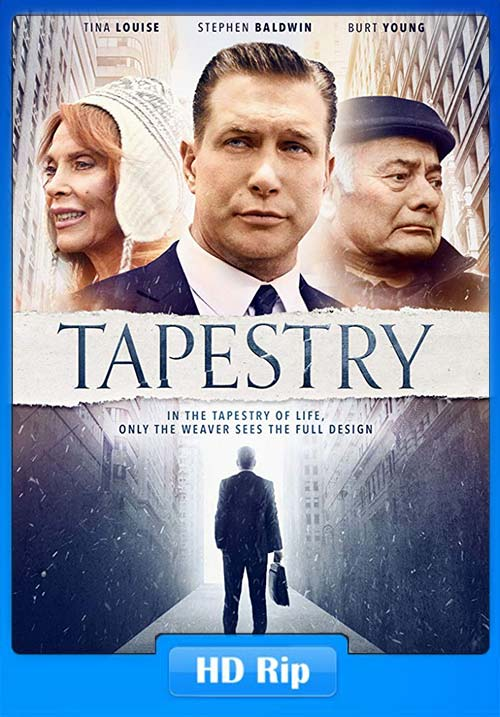 Tapestry 2019 720p WEB-DL x264 | 480p 300MB | 100MB HEVC Poster