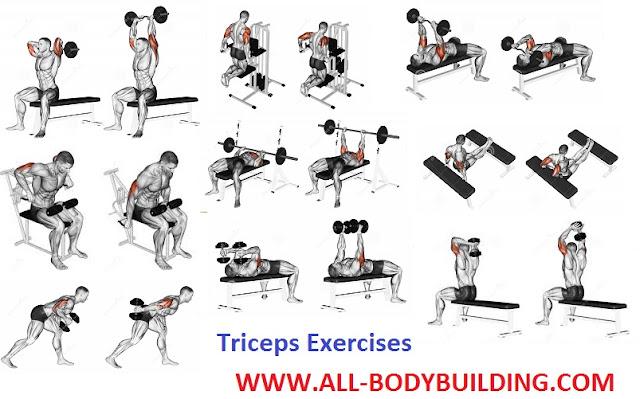 How To Get Bigger Triceps All Bodybuilding Com
