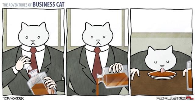 así come un señor gato