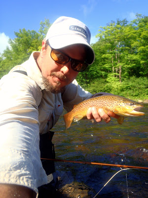 Wild Brown Trout Diable River
