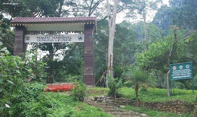 Gunung Leuser National Park, North Sumatera2