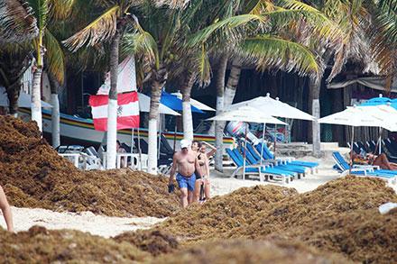 Resultado de imagen para Quintana Roo despliega estrategia contra el sargazo en la Riviera Maya