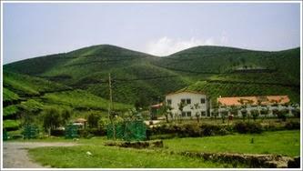 Shade Homestay Munnar Booking, munnar cottages, cottages in munnar, munnarcottages, budget cottages in munnar, group stay cottages, munnar resorts, hotel in munar