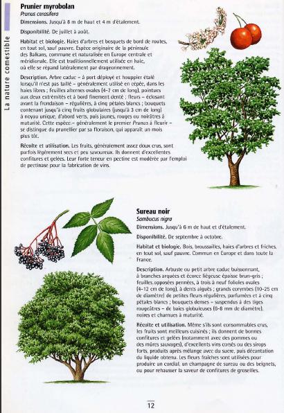 Téléharger livre gratuit: La nature comestible pdf