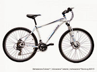 Sepeda Gunung Reebok Chameleon Chrome Pro 26 Inci