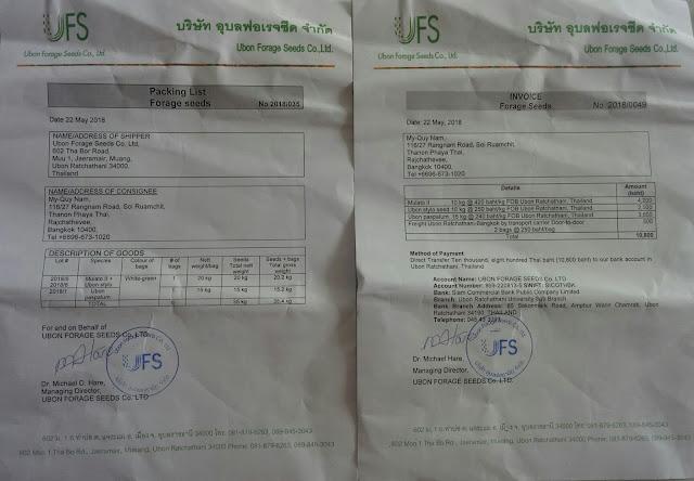 Hóa đơn xuất nhập khẩu tại thái lan