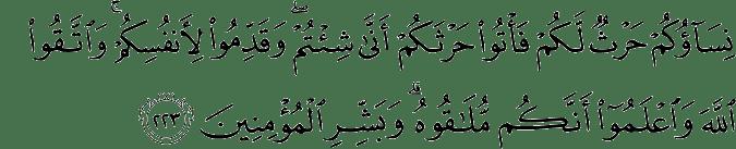 Surat Al-Baqarah Ayat 223