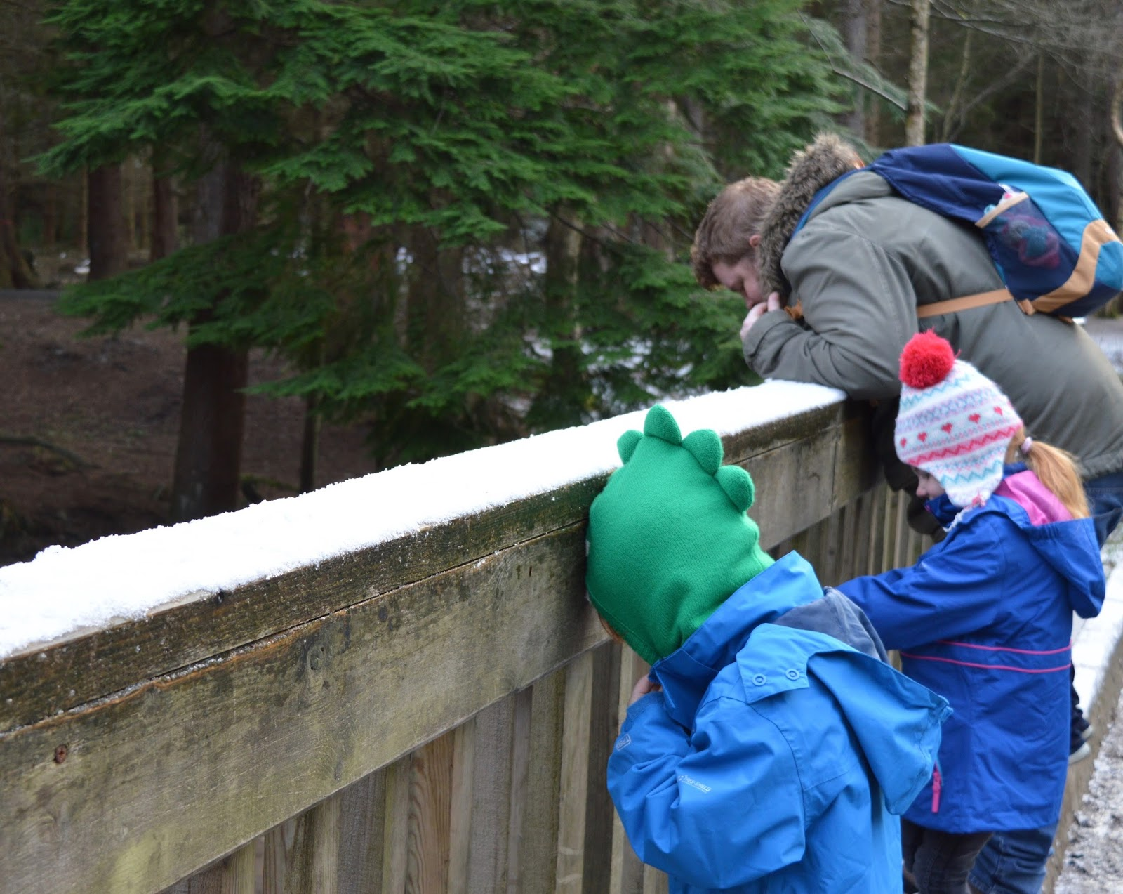 Pooh sticks at Hamsterley Forest