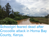 https://sciencythoughts.blogspot.com/2019/02/schoolgirl-feareddead-after-crocodile.html