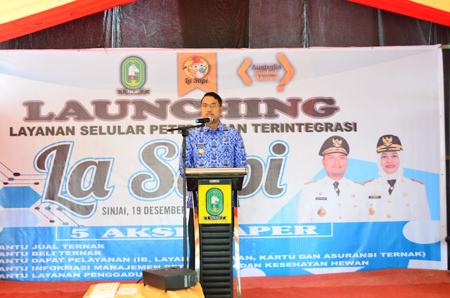 Wujudkan Sinjai Sebagai Sentra Pengembangan Sapi Potong, Bupati Launching Program LA SAPI