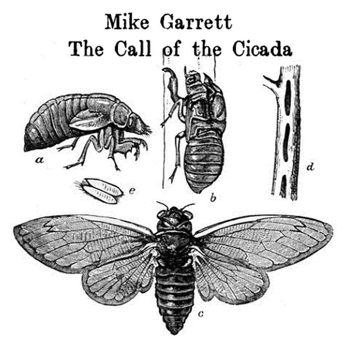 Mike Garrett - The Call of the Cicada