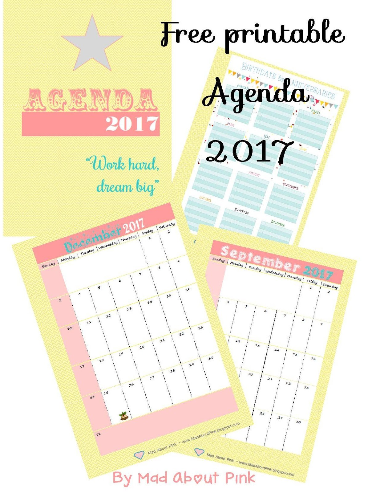 Mad About Pink Free printable 2017 Agenda A4 format – Format of an Agenda
