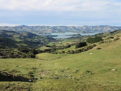 Península de Banks y Akaroa. Nueva Zelanda