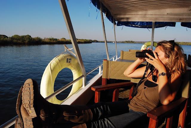observation de la faune depuis le bateau